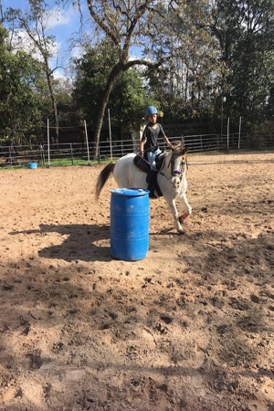 Barrel Riding Lessons